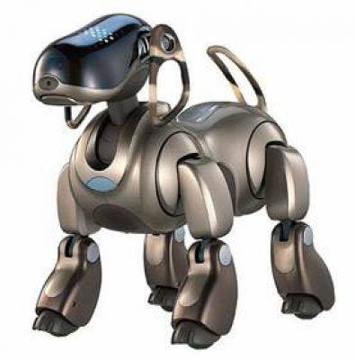 روبات-ها-با-ادب-می-شوند