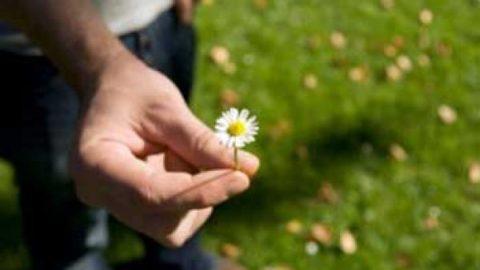روشهای صحیح عذرخواهی کردن کدام است؟