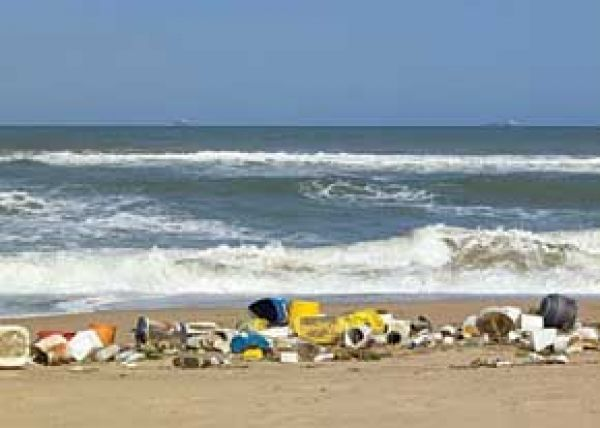 شناگاههای-آلوده-را-بشناسید