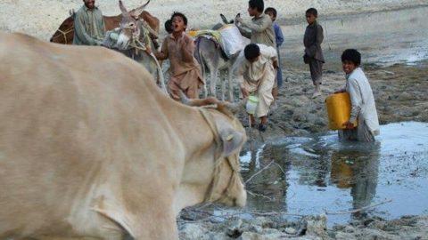 ادامه زندگی و رفع تشنگی با آب معدنی/ ۶۸ درصد روستاهای تلنگ با تانکر آبرسانی سیار میشوند