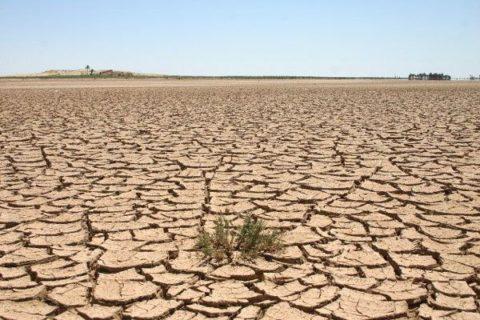 خسارت سالانه فرسایش خاک در کشور ۴۷۶ هزار میلیارد ریال است