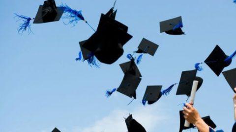 چند درصد فارغالتحصیلان جذب بازار کار میشوند؟