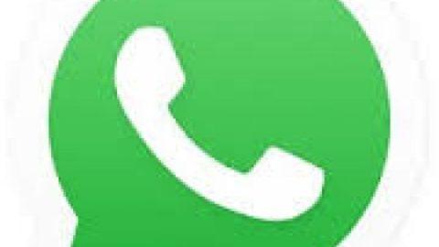 اضافه شدن حالت شب به اپلیکیشن واتس اپ