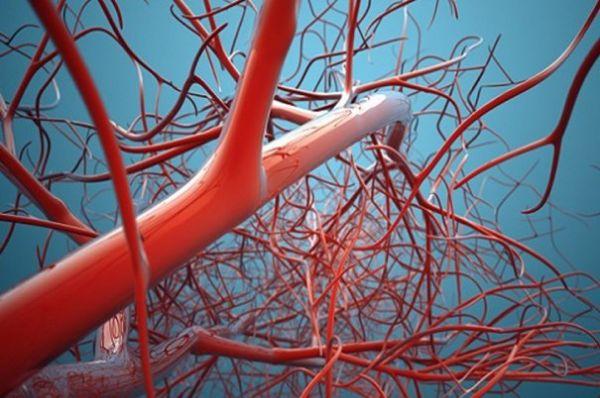 نانو-اینبار-به-کمک-بیماران-قلبی-میآید