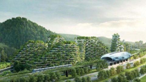 احداث نخستین شهر جنگلی دنیا در چین