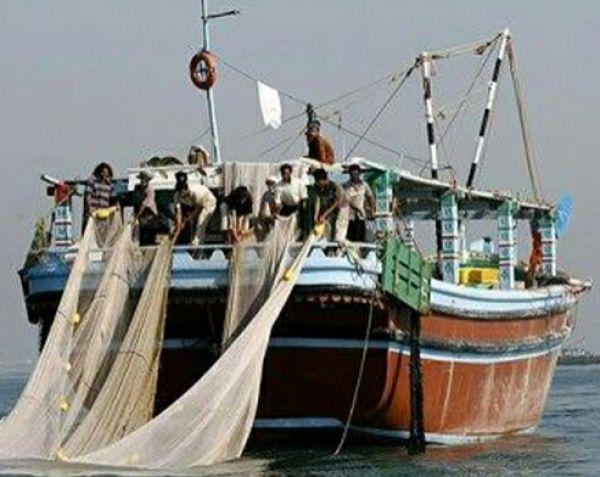 صید-ماهی-از-خلیج-فارس-برای-حفظ-ذخایر-آبی-ممنوع-شد