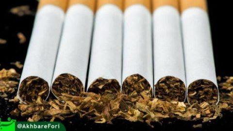 بیشترین مرگِ قابل پیشگیری در ایران مربوط به مصرف مواد دخانی است