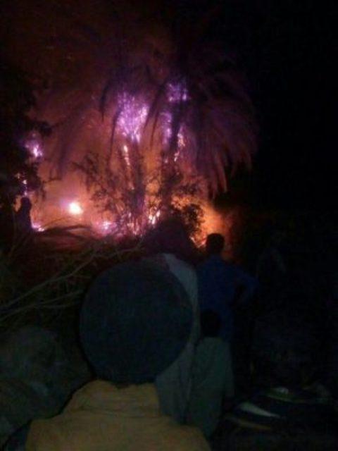 آتش سوزی نخلستان های نزدیکی سراوان + عکس