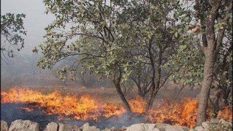دستگیری چهار متخلف آتشسوزی در کوهدشت