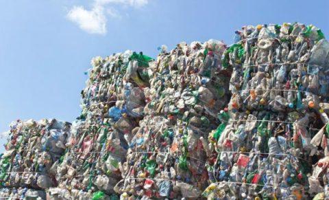 بحران زباله در زمین چه پیامدهایی دارد؟