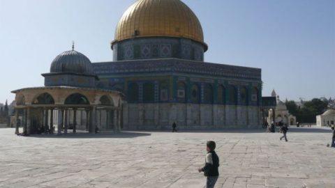 نظرشما درباره تعیین قدس به عنوان پایتخت رژیم صهیونیستی چیست؟/کشورهای مسلمان باید چه اقداماتی انجام دهند؟