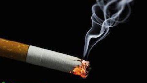 مسابقه دو سینماگر برای ترک سیگار!