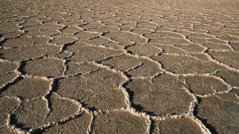 هشدار یک استاد دانشگاه؛ امکان وقوع خشکسالی شدید در ایران